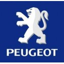 Ligne Groupe N/A INOXCAR PEUGEOT
